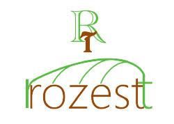 RROZESTT | ロゼスト